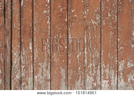 Old and peeling paint on board.wooden texture