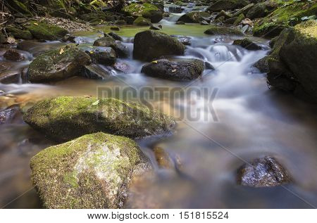 Small stream running on the Pisgah National Forest in North Carolina