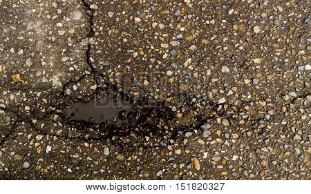 Asphalt, asphalt texture, scabrous asphalt background, asphalt pattern, cracked asphalt, grunge background, abstract, wet asphalt