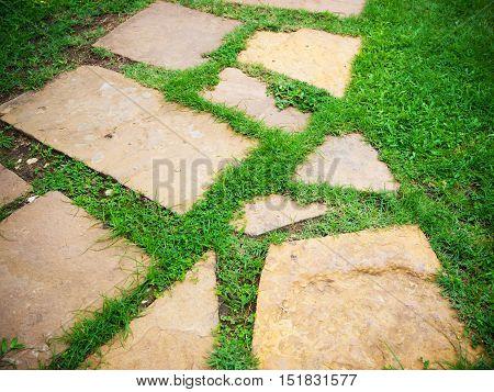 Stone block walk way in garden with green grass background