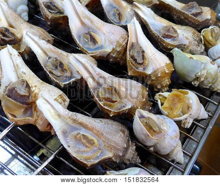 Grilled conch closeup at market in Taiwan.