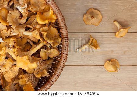 Close Up Edible Mushrooms Chanterelle In Wicker Basket On Wooden Background.