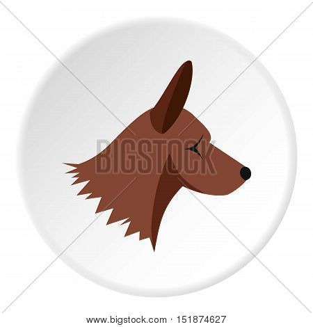 Collie dog icon. Flat illustration of collie dog vector icon for web