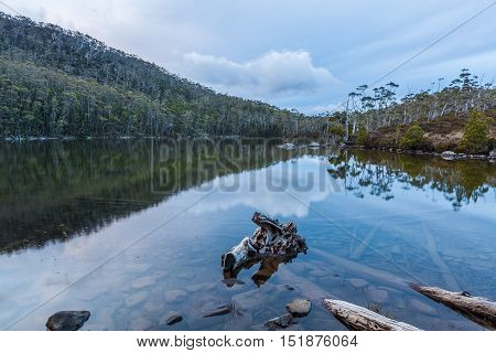 Lake Dobson Surrounded By Native Vegetation. Mount Field National Park, Tasmania