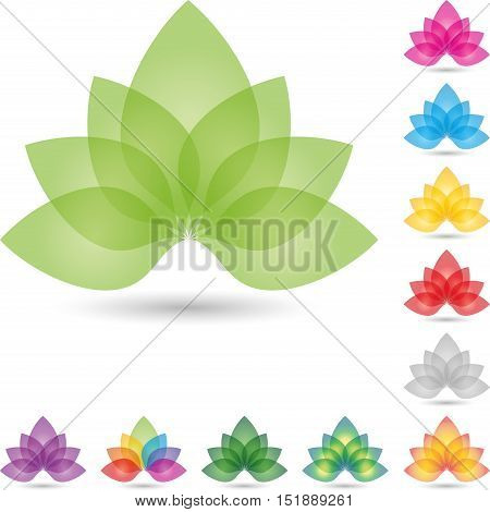 Many leaves, flower, colored, naturopath or nature logo