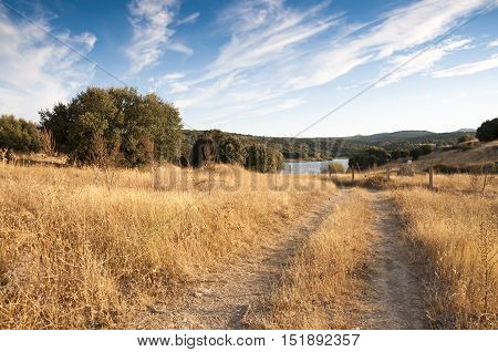 Country road  trough a Holm Oak forest. At the background the Pedrezuela reservoir Picture taken in Guadarrama Mountain Madrid Spain.