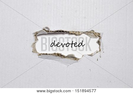 The word devoted appearing behind torn paper