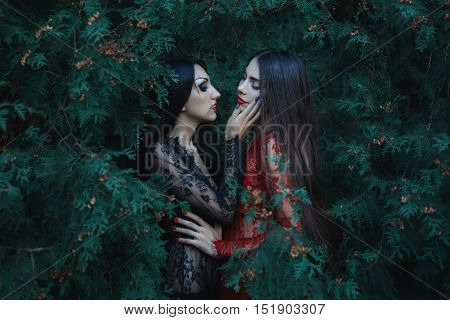 Two beautiful women lover they caress each other.