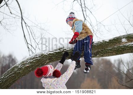 Little boy climbs down tree branch and mother catches him in winter snowy day