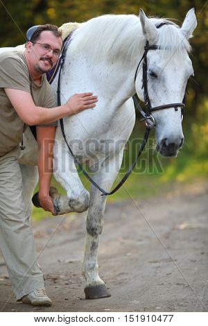 Happy man holds hoof of beautiful white horse in sunny autumn park