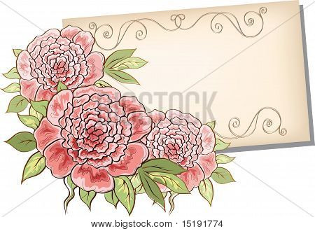 Peonies And Sheet Of Paper