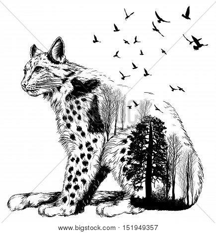 Vector Double Exposure, Lynx, Wildlife Concept