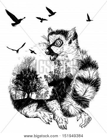 Vector Double exposure Hand drawn Ring-tailed lemur for your design wildlife concept