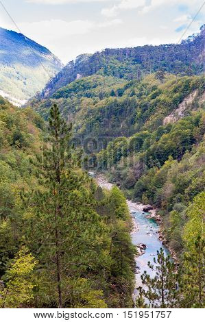 The Tara river canyon, view from height