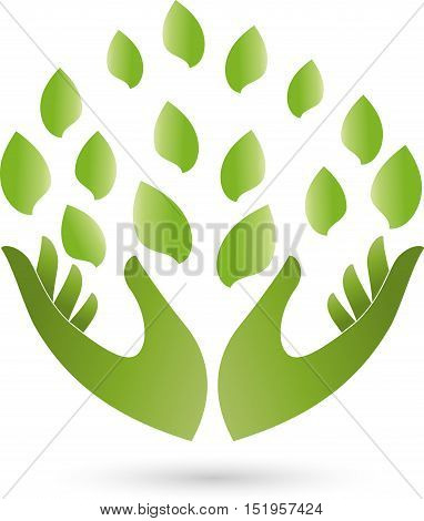 Two hands and leaves, nature and naturopathic logo
