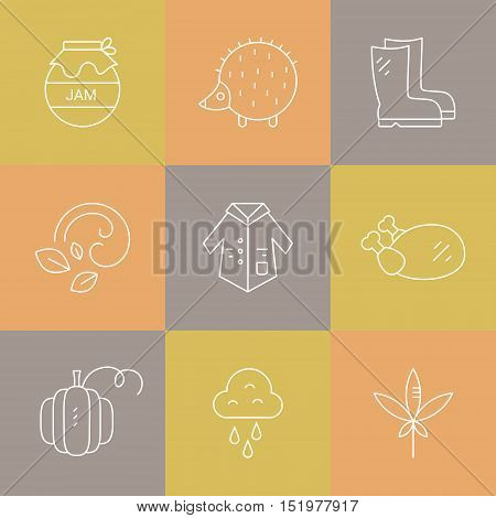 Collection of vector autumn icons. Vector pictogramm set. Unique and modern set of linear icons isolated on background.