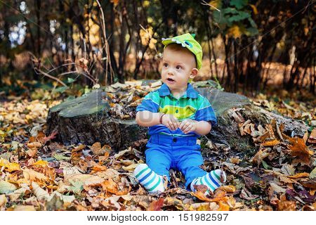 tiny boy sits in yellow autumn leaves under hemp