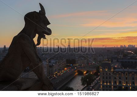 Chimeras Of Notre Dame