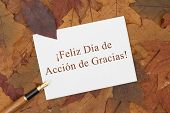 Happy Thanksgiving Greeting Card in Spanish Some fall leaves pen and a greeting card with text Feliz Dia de Accion de Gracias poster