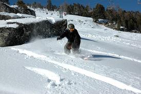 Snowboarding Freedom 4