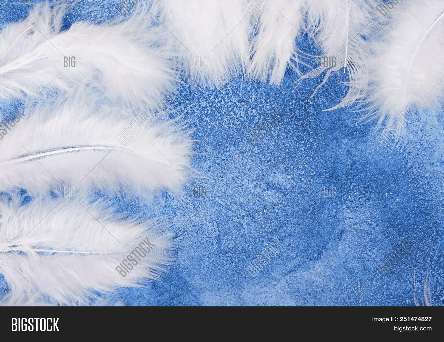 Fluffy White Feathers Image Photo Free Trial Bigstock