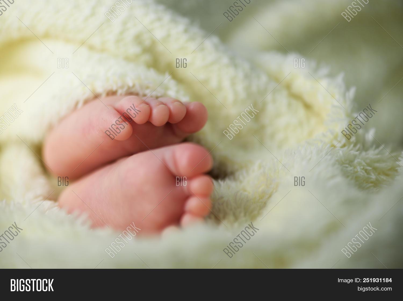 Newborn Baby Feet Image Photo Free Trial Bigstock