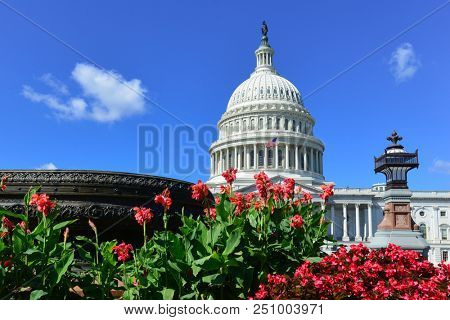 United States Capitol - Washington D.C. United States of America