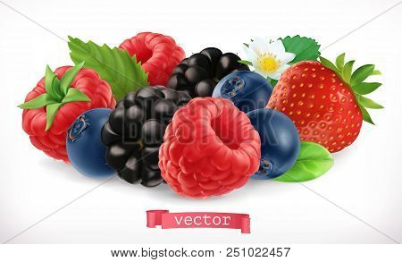 Forest Fruits And Berries. Raspberry, Strawberry, Blackberry, Blueberry. 3d Realistic Vector Icon