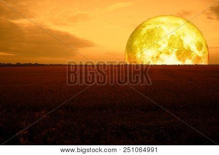 Super Half Blood Moon Back Red Field Night Sky