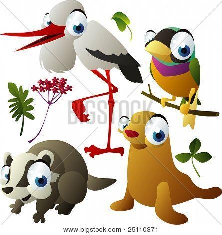 vector animals: stork, finch, badger, seal
