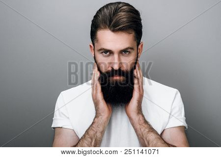 Horizontal portrait of handsome masculine young bearded man is keeping hand on beard and looking at the camera, on a gray studio background. Portrait of young European hipster with trendy beard. poster