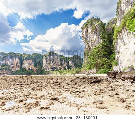 Popular Travel Tropical Karst Rocks Perfect For Climbing Tonsai Low Tide Water Beach, Krabi Province