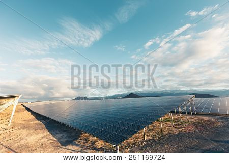 Group Of Solar And Photovoltaic Panels For Electric Power Production.