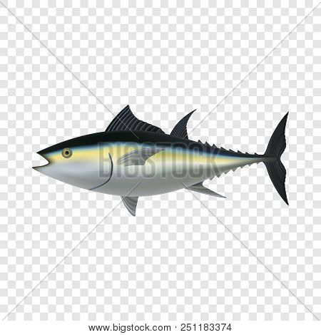 Tuna Fish Mockup. Realistic Illustration Of Tuna Fish Vector Mockup For On Transparent Background