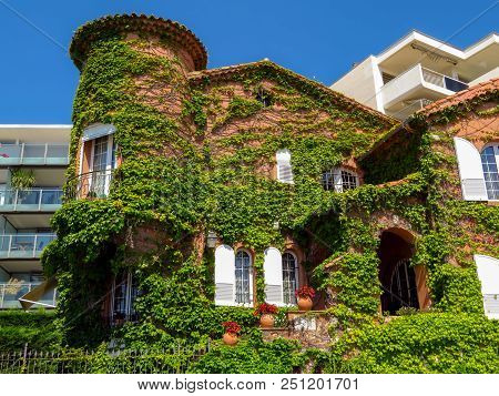 Cannes, France - July 13, 2018: Clambering Plant On The Exterior Wall Of The Old House On The Boulev