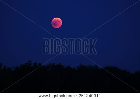 Total Lunar Eclipse In July 2018, 27th, Blood Moon Rising Over Woodland