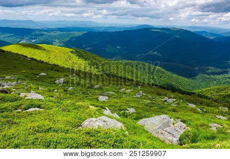 Grassy Slope With Rocks On High Altitude In Mountains. Beautiful Summer Landscape Of Carpathians