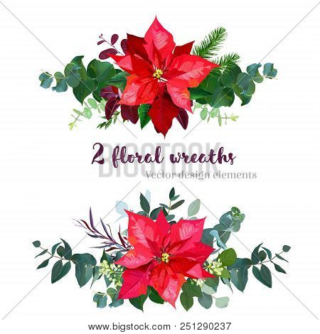 Christmas Bouquets Arranged From Red Poinsettia Flowers, Fir Branch, Agonis, Seeded Eucalyptus, Emer