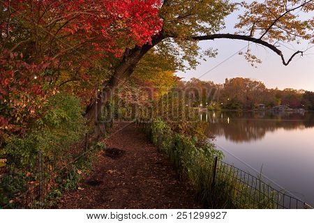 Autumn Colors At Sunrise In Central Park New York, United States Of America