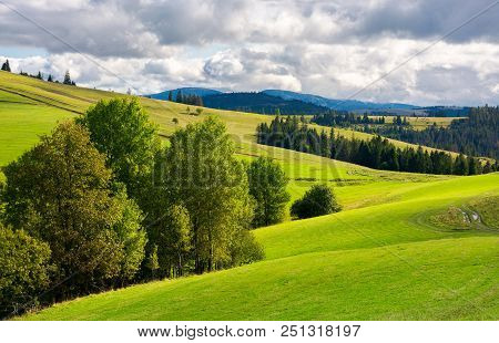 Beautiful Mountainous Countryside. Grassy Rolling Hills With Trees. Mountain Ridge In The Distance.
