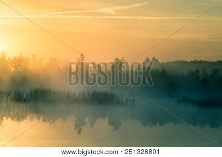 A Beautiful, Colorful Landscape Of A Misty Swamp During The Sunrise. Atmospheric, Tranquil Wetland S