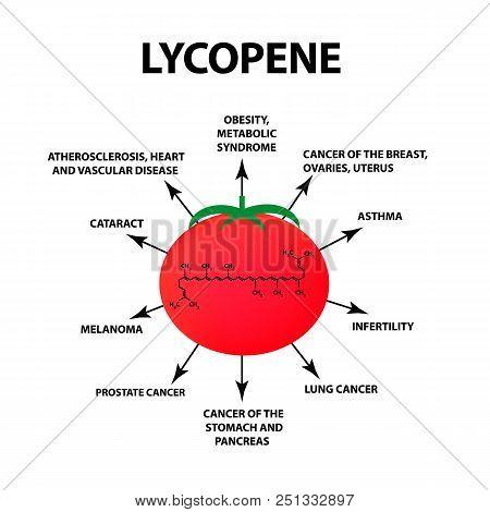 Lycopene Treats The Disease. Tomato Is Useful. Vector Illustration On Isolated Background