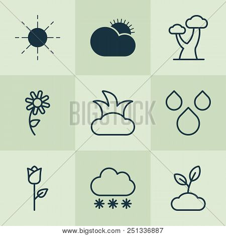Harmony Icons Set With Big Tree, Rose, Clear Sunrise And Other Snowstorm Elements. Isolated Vector I