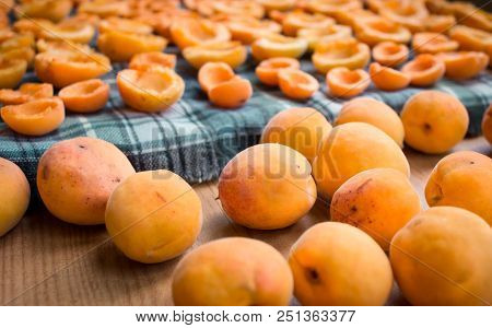 Fresh summer harvest of juicy mellow orange apricot fruits are drying on sun preparing for conservation poster