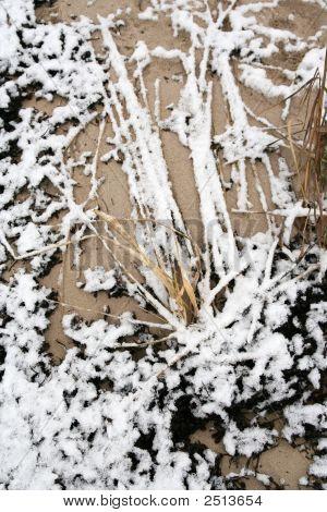Snow On The Sand