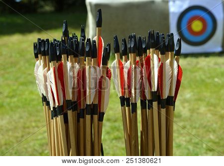 Close-up of a box of arrows showing the fletchings, arrows are use for sport and hunting poster