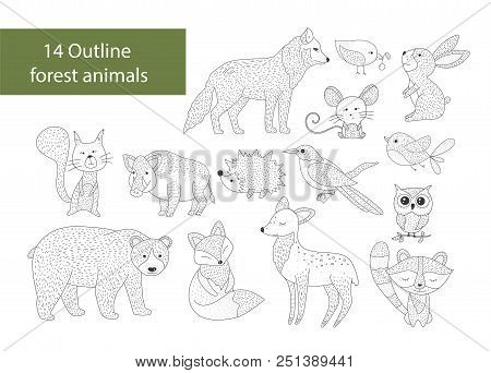 Big Set Of Hand Drawn Forest Illustraitions With Outline Animals On A White Background. Woodland Ico