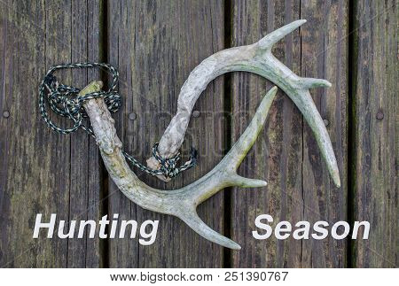 Hunting Season Text With Whitetail Deer Rattling Horns.  Deer Antlers Used As Hunting Call. Fun Recr