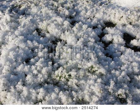 Acicular Ice Crystals In Winter Brook