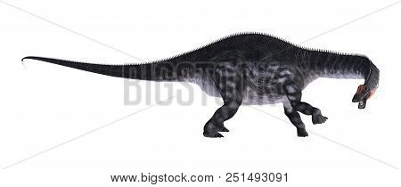 3D Rendering Dinosaur Apatosaurus On White